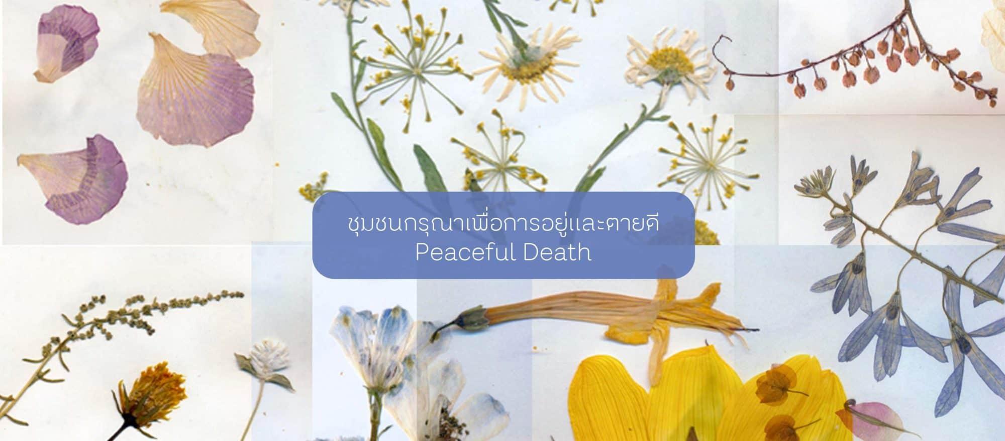 Peaceful Death ชุมชนกรุณาเพื่อการอยู่และตายดี